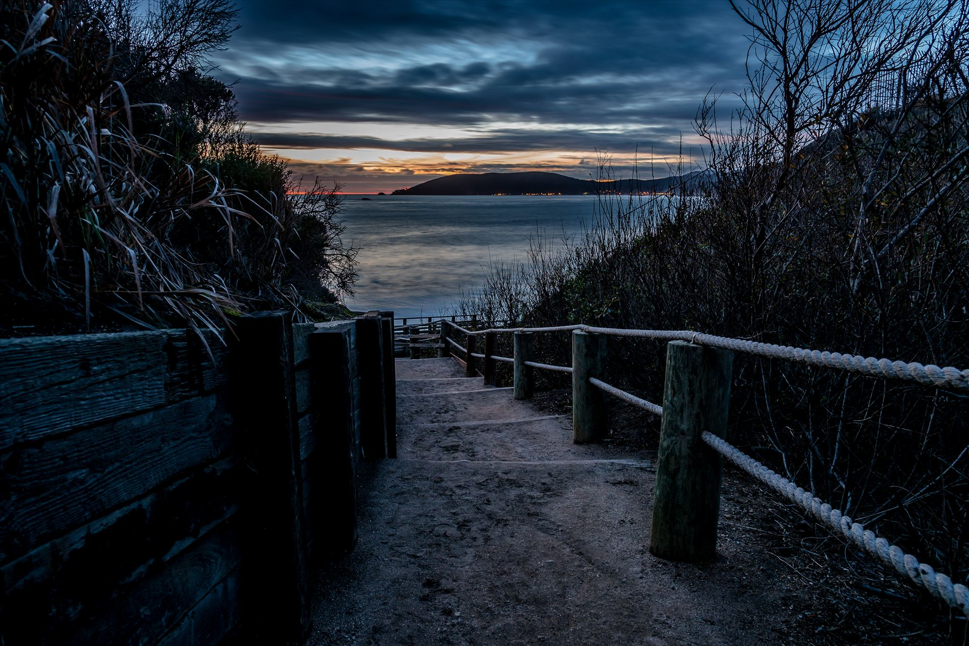 The Cove Path at Night.jpg -  by Sarah Williams
