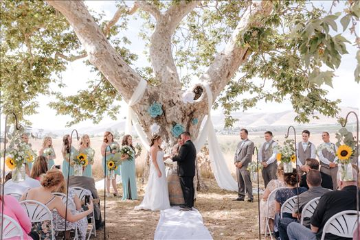 Mirror's Edge Photography, a San Luis Obispo Wedding Photographer, captures a wedding at the Historic Dana Adobe in Nipomo California.  Ceremony under the tree.