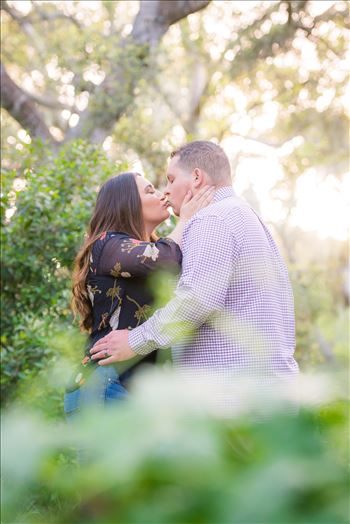 Los Osos Oaks Nature Reserve Engagement Photography Session by Mirror's Edge Photography with gorgeous light