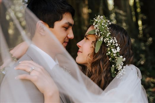 Mt Madonna wedding in the redwoods outside of Watsonville, California with a romantic and classic vibe by sarah williams of mirror's edge photography a san luis obispo wedding photographer.  Under the veil