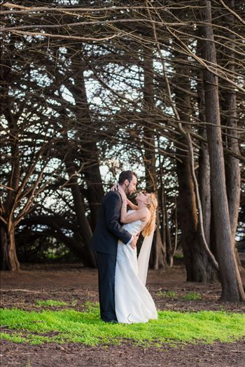Ragged Point Inn Wedding Elopement photography by Mirror's Edge Photography in San Simeon Cambria California. Bride and groom in the trees